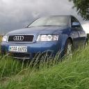 Audi On Grass.gif