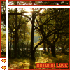 Autumn Love