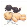 Cat And Teddy Bear