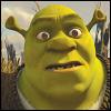 Shrek confused