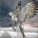 exotic animal avatar 1771